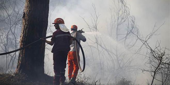 Turizmin kalbinde orman yangını! Ekipler bölgede…