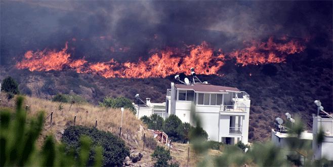 Bodrum'da makilik ve otluk alanda yangın
