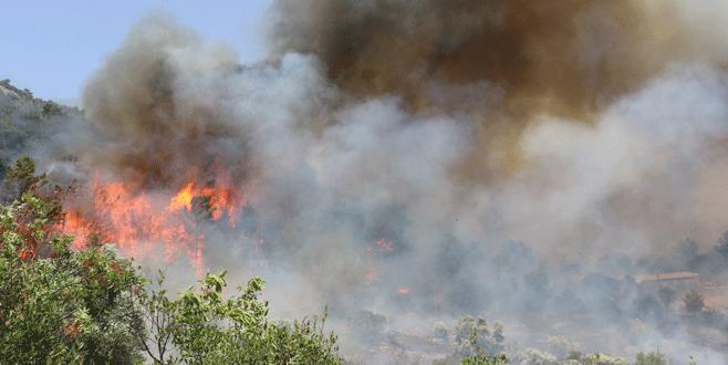 Bakandan Antalya'daki orman yangınına ilişkin açıklama
