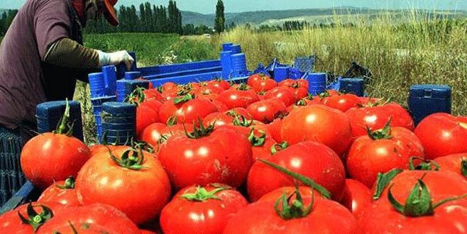Türk sebze ve meyvesi iki haftada Rusya'da