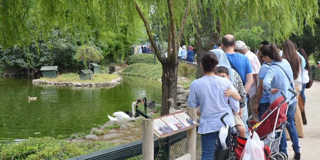 Bursa Zoo Park ziyaretçi akınına uğradı