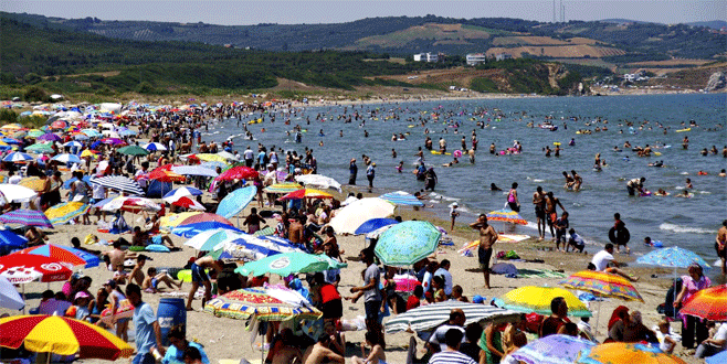 Bursa sahillerinden güzel haber