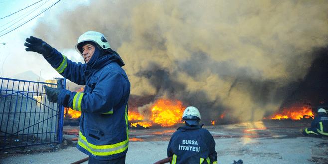 Bursa'da korkutan yangında 4 köpek telef oldu