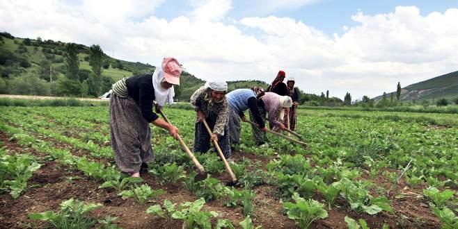 Türk çiftçisinde Rusya sevinci