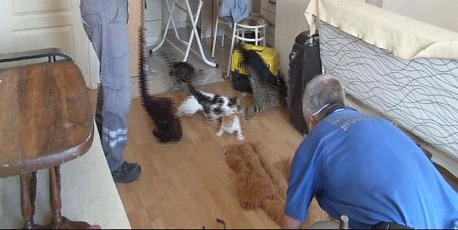 Bursa'da çöp evdeki ekipler çekyatı açtığında neye uğradığını şaşırdı