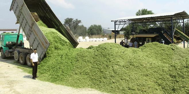 Sözleşmeli tarıma ilgi artıyor