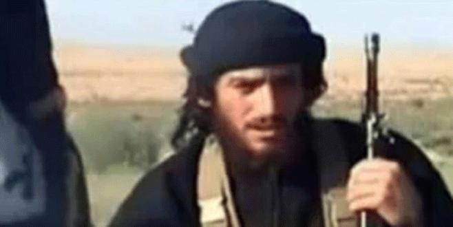 IŞİD Sözcüsü öldürüldü