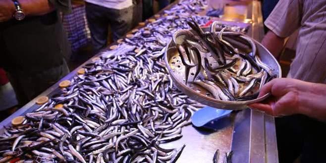 """Balıkçılar """"vira bismillah"""" dedi, tezgahlar şenlendi"""