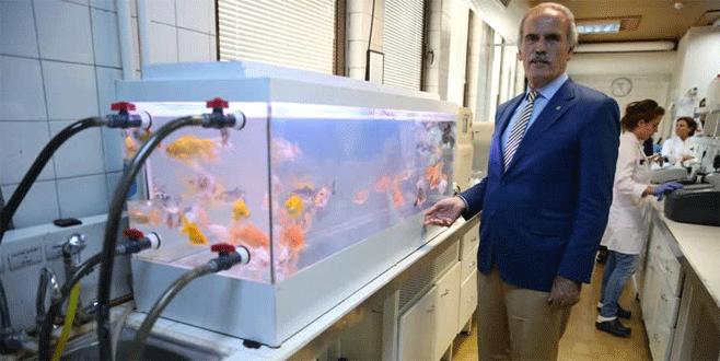 İçme suyu zehirlenmelerine 'Japon balığı' örneği