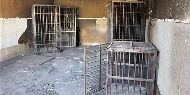 Mahkumları bu kafeslere kapatmışlar