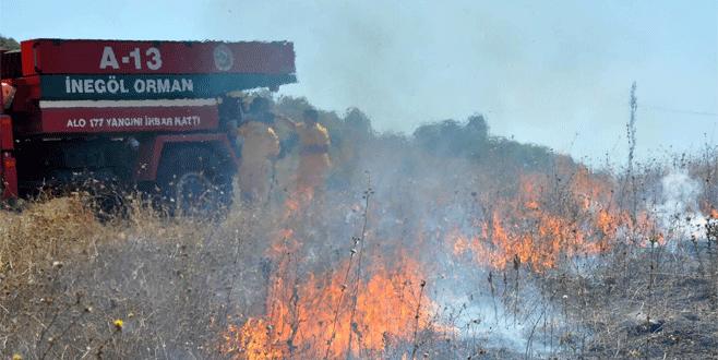 Bursa'da çalılık alanda korkutan yangın