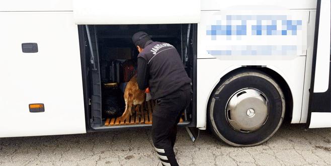 Bursa Jandarması suçlulara nefes aldırmıyor