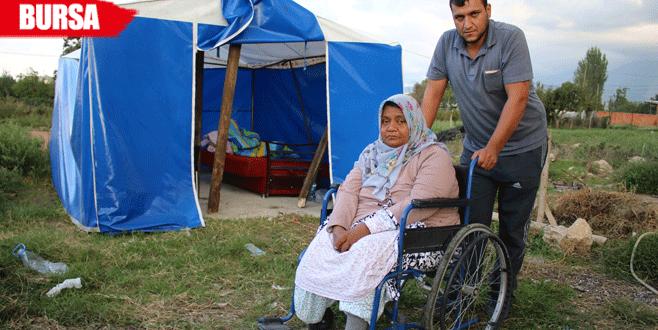 Diyaliz hastası yaşlı annenin çadırda yürek burkan dramı