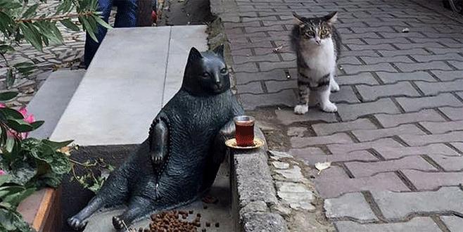 Oturuşuyla ünlenen kedi Tombili'nin heykeli açıldı