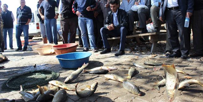 Bursa'da zıplamayan balığa para yok