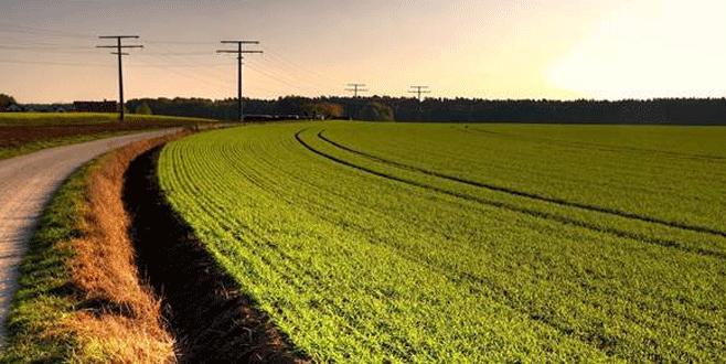 Kritik tarım ürünleri belli oldu
