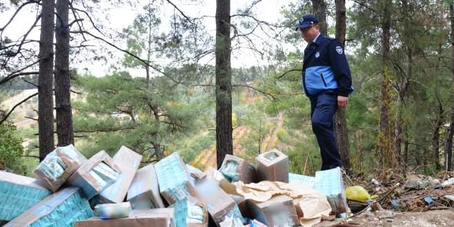 Bursa'da bozuk sütleri ormana attılar