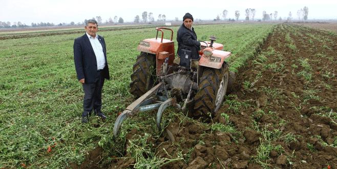 Yenişehirli çiftçi sezonu kapatıyor