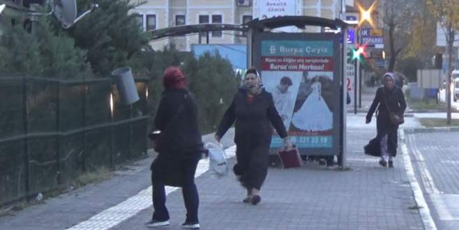 Lodos Bursa'da hayatı olumsuz etkiledi