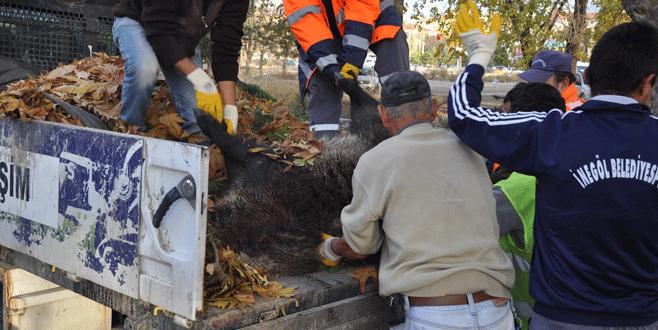 Bursa'da tören alanının yakınına domuz leşi
