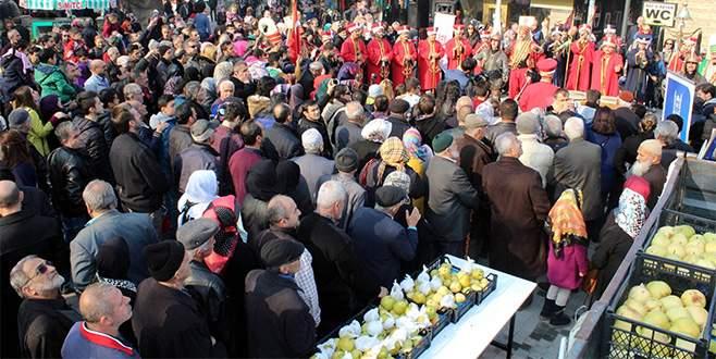 Bursa'da bedava armut izdihamı
