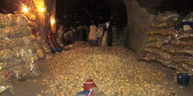 Tonlarca patates mağaralarda saklanıyor