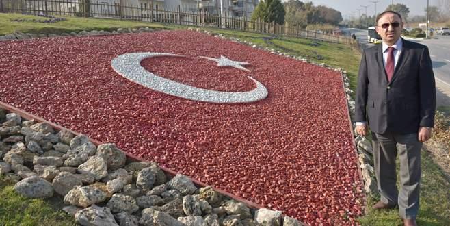 Mustafakemalpaşa'ya 256 bin kış çiçeği