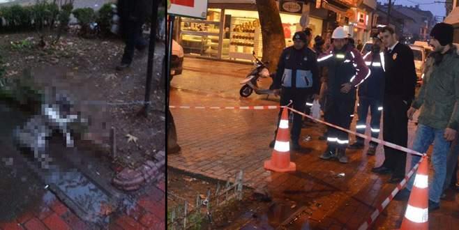 Bursa'da direğe bağlanan köpek akıma kapılarak telef oldu