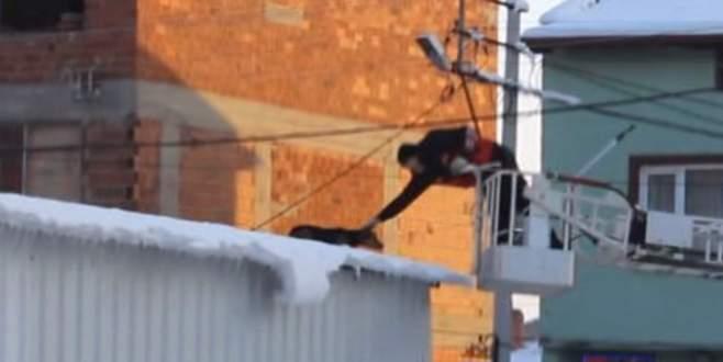 Çatıda mahsur kalan köpeği itfaiye ekipleri kurtardı