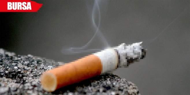 Sigara izmaritlerindeki DNA örnekleri hırsızları yakalattı