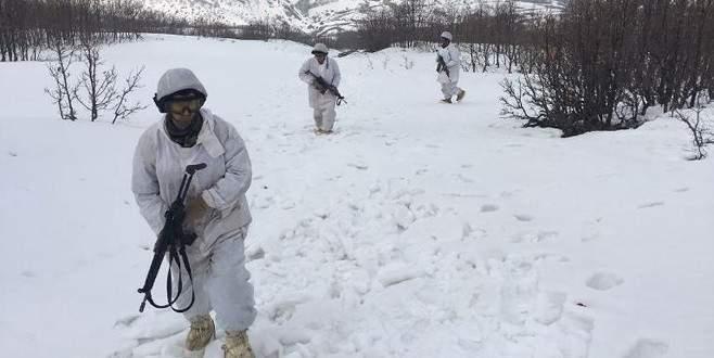 Tunceli'de terör örgütlerinin 'kış üslenmesi'ne ağır darbe