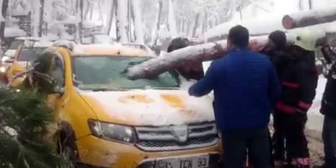 Taksici ölümden döndü
