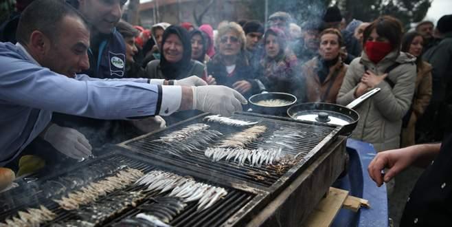 Bursa'da 1 ton hamsi dağıtıldı