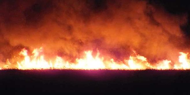 Göksu Deltası yanıyor, kimse müdahale edemiyor!