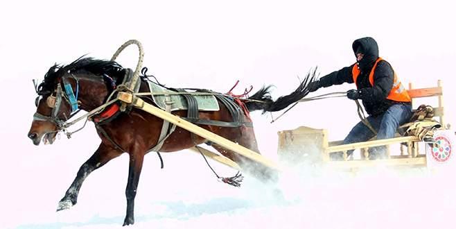 Uludağ'da kızaklı at yarışları nefes kesti