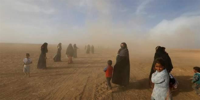 DEAŞ'tan kaçan siviller mayına bastı