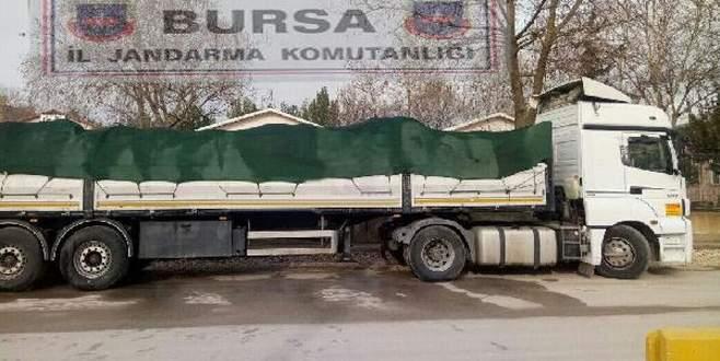 TIR'da 20 ton kaçak midye ele geçirildi