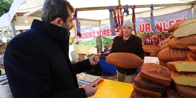 Gürsu'da 1 tonluk hamsi festivali
