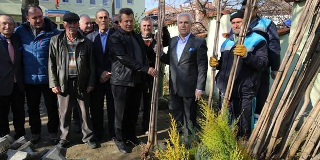 Nilüfer'de gelecek için 14 bin fidan