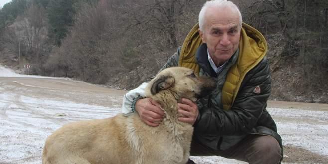 Uludağ'daki sahipsiz hayvanların babası