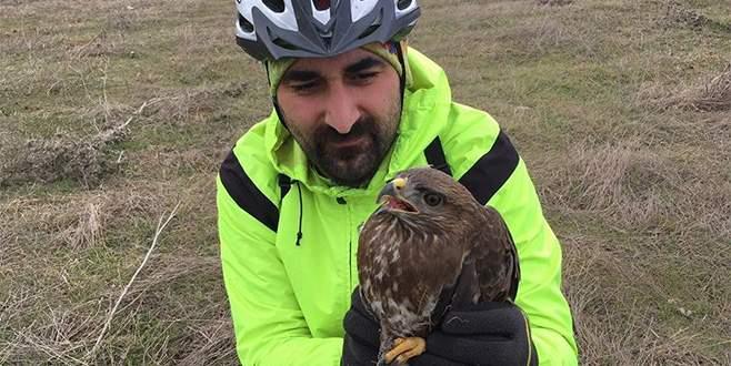 Yaralı şahini bisikletçiler kurtardı