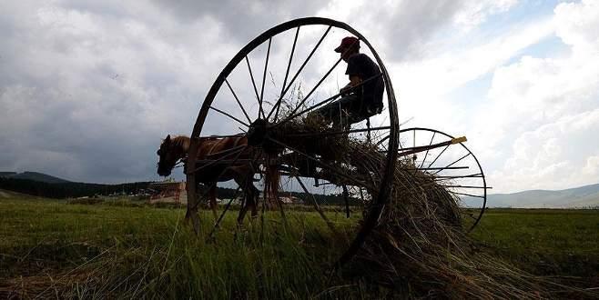 Çiftçilere ödemeler bugün başlandı
