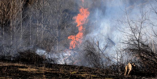 Çalılık yangını evlere sıçramadan söndürüldü