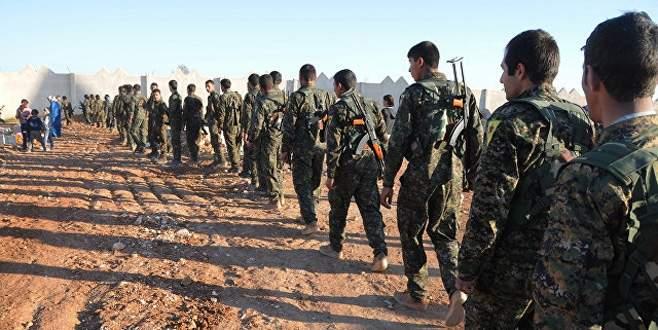 YPG'ye siyasi destek