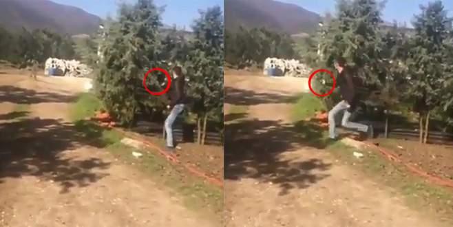 Bursa'da köpeğe silahlı saldırı kamerada