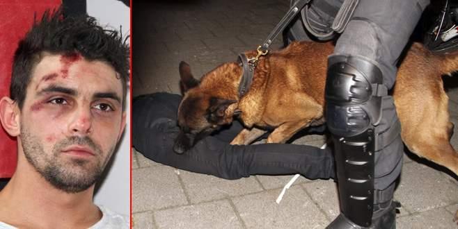 Hollanda polisinin köpekli saldırısına uğrayan Hüseyin Kurt Türkiye'de