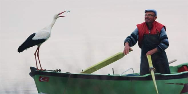 Leylek ile Bursalı balıkçının hikayesi film oluyor