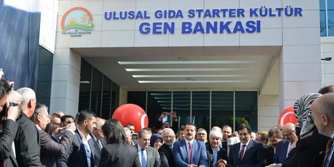 Bakan Çelik, Bursa'da Gen Bankası'nın açılışını yaptı