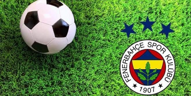 Fenerbahçe 'hibrit çim'e geçiyor