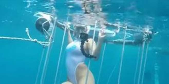 Porno yıldızına köpek balığı saldırdı